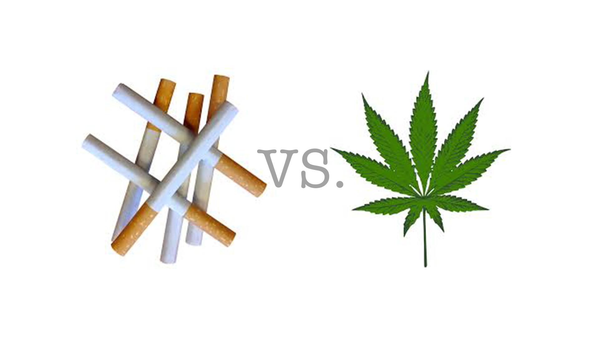 Конопля или табак что хуже как убрать из крови марихуану